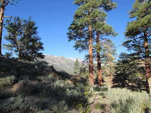 Lot 36 Montana Rd Sunny Slopes/Toms Place, CA 93546