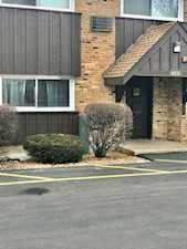 4435 Arbor Circle #4 Downers Grove, IL 60515