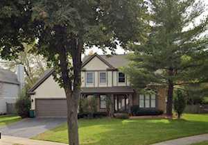 1196 Sandhurst Dr Buffalo Grove, IL 60089