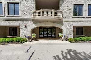 1800 Amberley Ct #206 Lake Forest, IL 60045