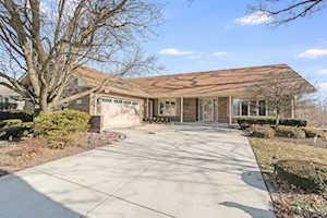 13064 W Creekside Dr Homer Glen, IL 60491