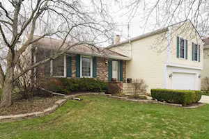 1474 Oxford Dr Buffalo Grove, IL 60089