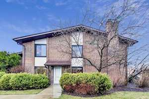 1101 Deerfield Place Highland Park, IL 60035
