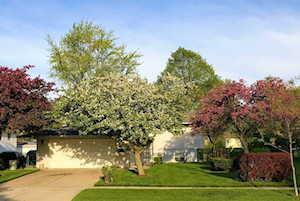 552 White Pine Rd Buffalo Grove, IL 60089