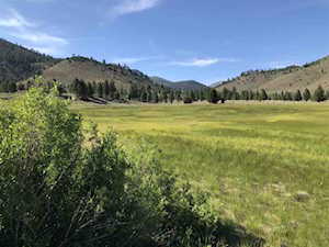 Lot 32 Toiyabe Meadows Hwy 395 Bridgeport, CA 93517