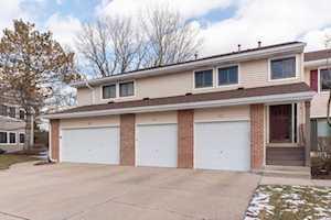 1014 Pinetree Circle Buffalo Grove, IL 60089