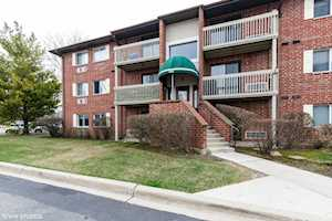 960 N Lakeside Dr #1B Vernon Hills, IL 60061