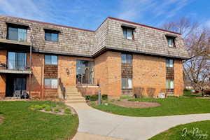 3 Oak Creek Dr #1404 Buffalo Grove, IL 60089