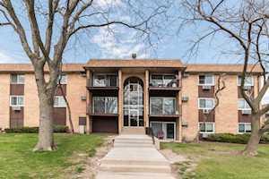 730 Hill Dr #308 Hoffman Estates, IL 60169