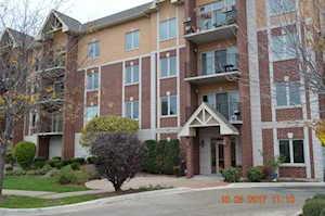 8120 W Park Ave #202 Niles, IL 60714