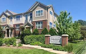 100 S Dee Rd #5 Park Ridge, IL 60068