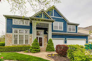 6 W River Oaks Circle Buffalo Grove, IL 60089