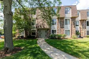 274 W Court of Shorewood #3A Vernon Hills, IL 60061