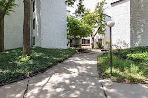 354 W Miner St #3A Arlington Heights, IL 60005