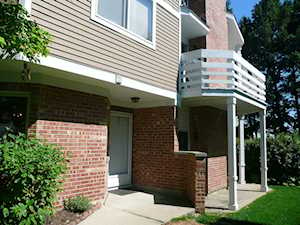 1111 Courtland Dr Buffalo Grove, IL 60089