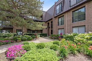 1 Court of Harborside #205 Northbrook, IL 60062