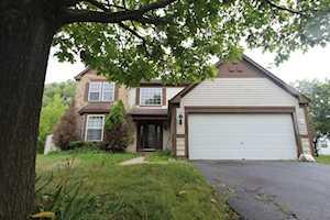 1110 Cottage Cove Elgin, IL 60123
