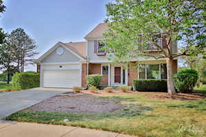 30 Chestnut Ct W Buffalo Grove, IL 60089