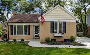 729 S Evergreen Ave Arlington Heights, IL 60005