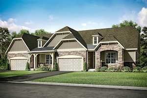 118 Costekin Lot #7.01 Ct Hawthorn Woods, IL 60060