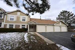 1116 Auburn Ln #1116 Buffalo Grove, IL 60089