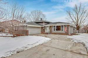 6S157 Country Dr Naperville, IL 60540
