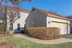 6 The Court of Stonecreek Northbrook, IL 60062