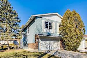 6466 Hathaway Ln Downers Grove, IL 60516