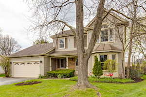 1130 Highland Grove Dr Buffalo Grove, IL 60089