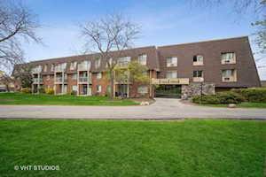 3 Villa Verde Dr #307 Buffalo Grove, IL 60089
