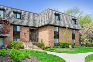 3 Oak Creek Dr #1405 Buffalo Grove, IL 60089