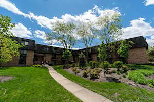 10 Oak Creek Dr #2016 Buffalo Grove, IL 60089