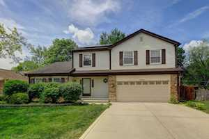 990 Weeping Willow Dr Wheeling, IL 60090