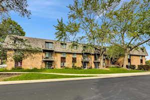 7 Oak Creek Dr #1705 Buffalo Grove, IL 60089