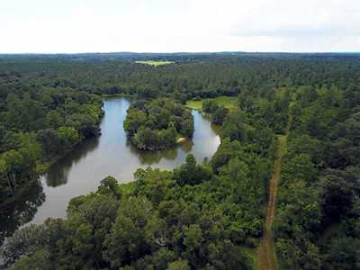 Buck Lake Area Homes for Sale